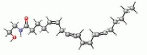 Chemical_anandamide_endocannainoidi