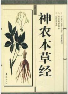 Shennong_bencao_jing_Marijuana_medica